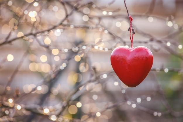 Ami il concetto, simbolo di amore di forma del cuore che appende sull'albero del ramo in annata con lo spazio della copia