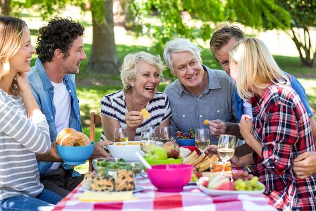Amici che fanno un picnic