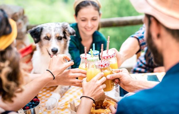 Amici felici che tostano il succo di frutta arancio sano al picnic della campagna