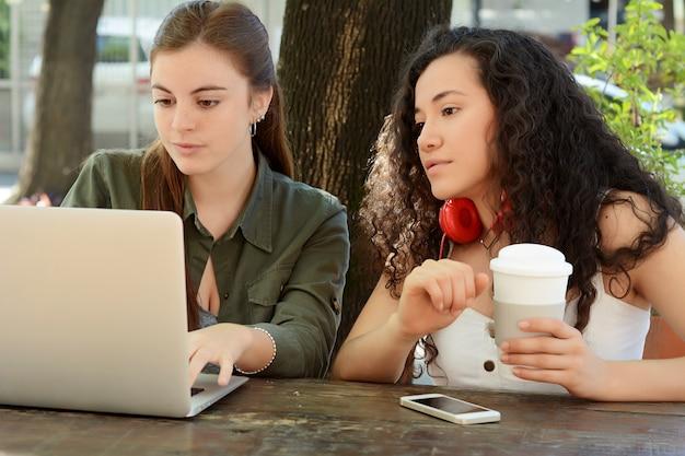 Amici femminili che studiano con un computer portatile in una caffetteria
