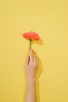 Amore o concetto di san valentino. sfondo primavera o estate