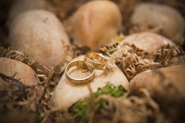 Anelli di nozze d'oro sulle rocce di una spiaggia.