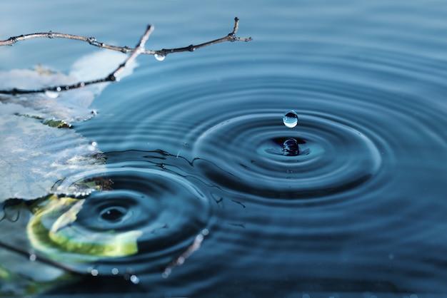 Anelli sulla superficie dell'acqua