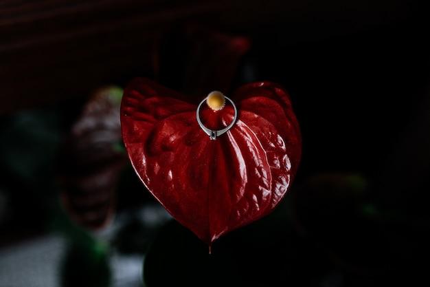 Anello di fidanzamento con diamante su un fiore di calla