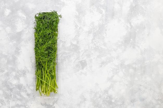 Aneto verde fresco in scatole di plastica su calcestruzzo grigio