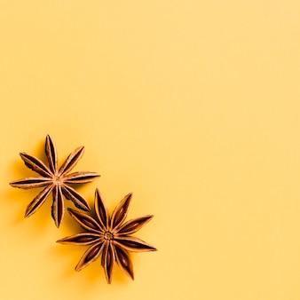 Anice stellato carino con sfondo arancione