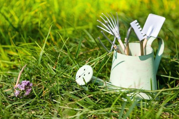 Annaffiatoio e strumenti di giardino su erba di estate
