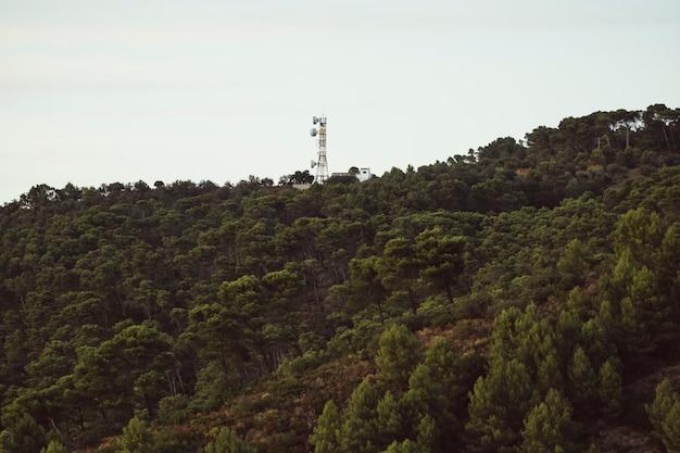 Antenna sopra la montagna della foresta