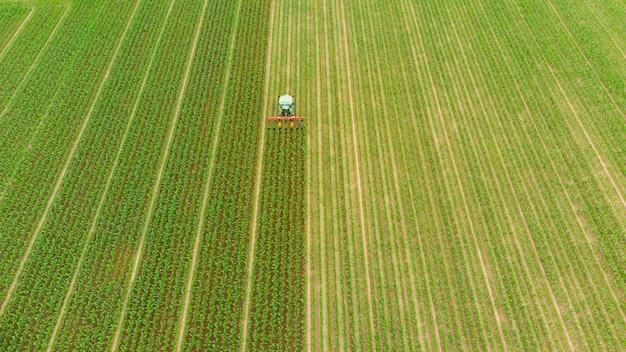 Antenna: trattore che lavora su campi coltivati, terreni agricoli, occupazione agricola, vista dall'alto verso il basso di lussureggianti colture di cereali verdi, sprintime in italia