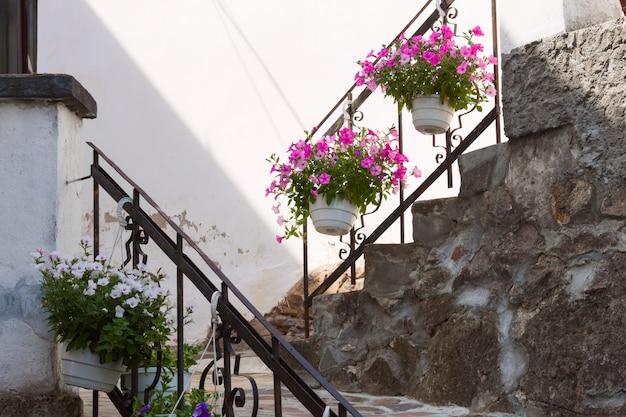 Antichi gradini in pietra con vasi di fiori con petunie rosa, bianche e viola.