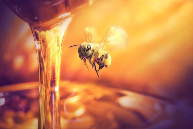 Ape che vola al miele che gocciola in un barattolo di vetro
