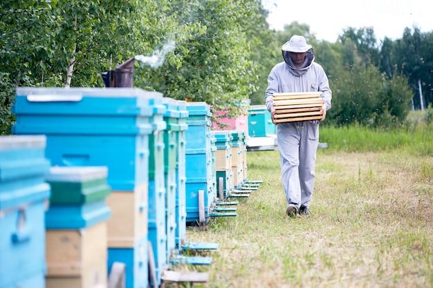 Apicoltore che lavora in apiario