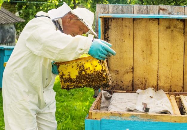 Apicoltore con api all'aperto