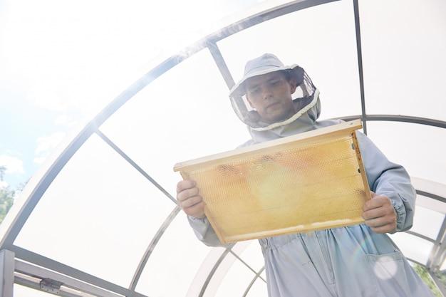 Apicoltore moderno che raccoglie miele