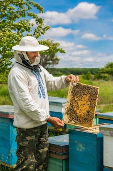 Apicoltori all'alveare con nido d'ape in estate, giornata di sole