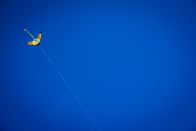 Aquilone variopinto con il volo di coda lunga nel cielo blu contro il sole, spazio della copia.