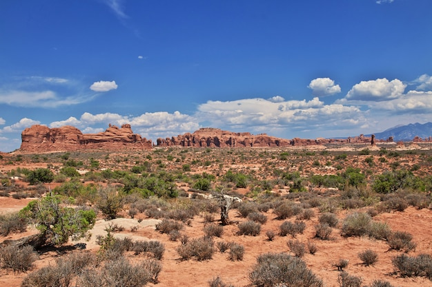 Arches valley nello utah, stati uniti d'america