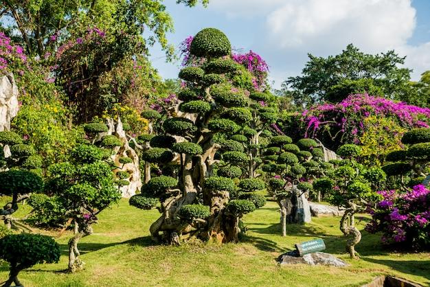 Architettura del paesaggio di lusso del giardino tropicale.