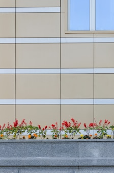Architettura edilizia minimalista