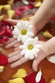 Aromaterapia, fiori a mano, petali di rosa