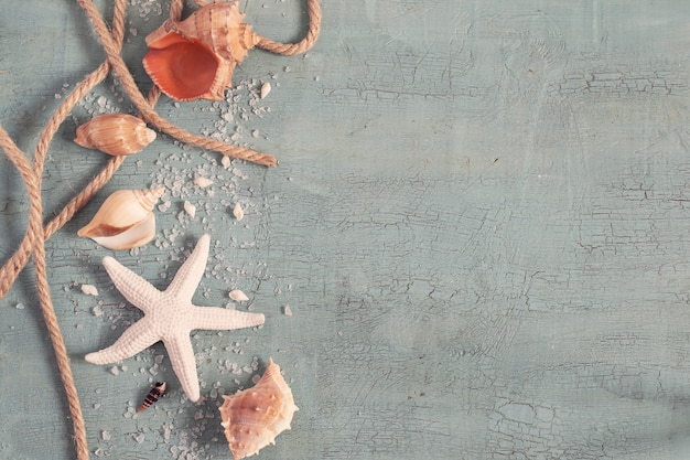 Articoli marini con stella marina e conchiglie