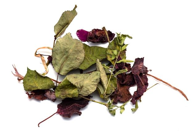 Asciughi le foglie ed i fiori morti dell'erba isolati su bianco