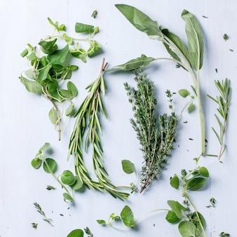 Assortimento di erbe fresche