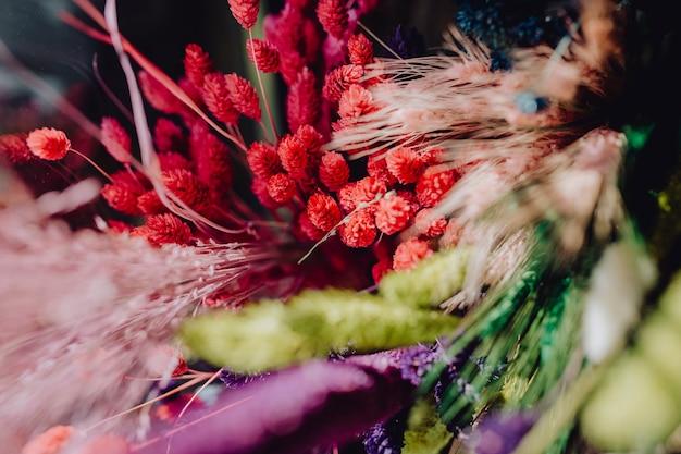 Assortimento di fiori selvatici secchi colorati