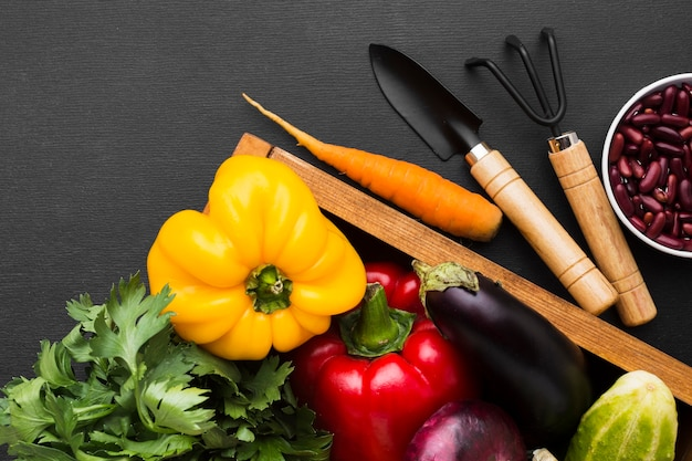 Assortimento di verdure piatte su sfondo scuro