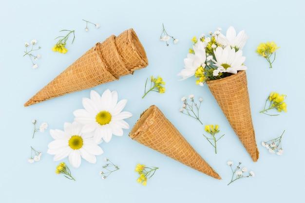Assortimento piatto con fiori e coni