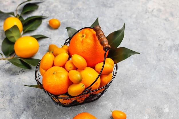 Assortiti agrumi freschi nel cestello per la conservazione degli alimenti, limoni, arance, mandarini, kumquat, vista dall'alto