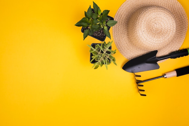 Attrezzi da giardinaggio con cappello di paglia e copia spazio