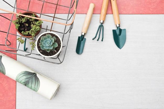 Attrezzi e piante da giardinaggio