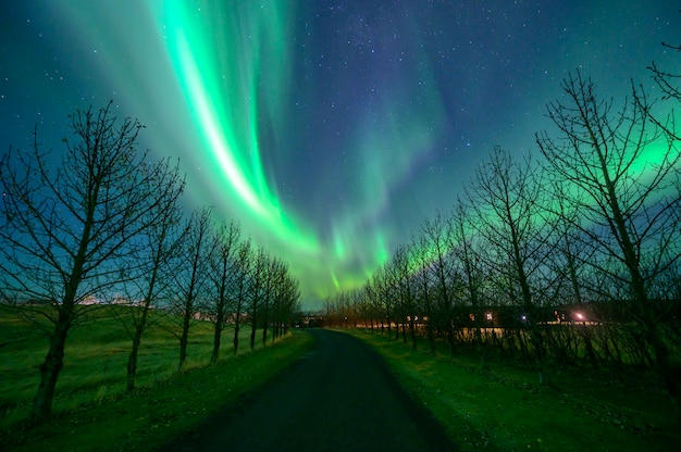 Aurora boreale (aurora borealis) in islanda