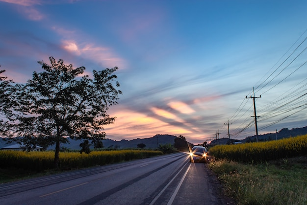 Auto sulla strada e crotalaria giallo juncea l. sullo sfondo montagne e il sole