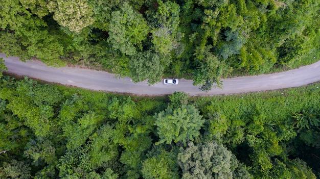 Automobile aerea di vista superiore che guida attraverso la foresta sulla strada campestre
