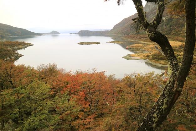 Autumn landscape durante il sentiero nel parco nazionale terra del fuoco, patagonia, argentina