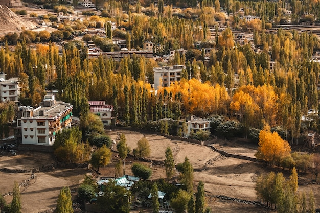 Autumn view di paesaggio nel distretto di leh ladakh, parte settentrionale dell'india