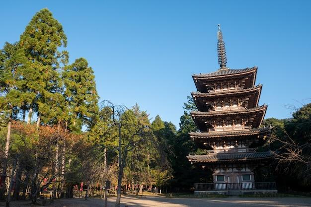 Autunno autunnale giapponese. tempio di kyoto daigoji.
