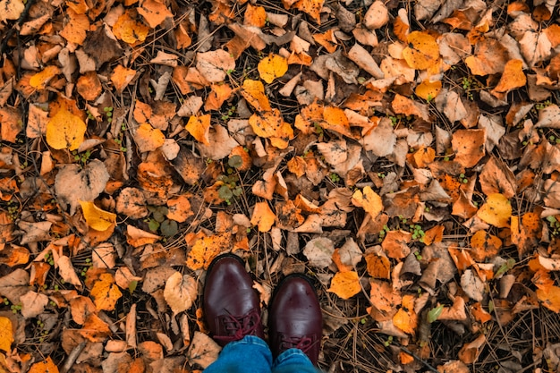 Autunno, autunno, foglie, gambe e scarpe. stivali gambe sulle foglie d'autunno. piedi di scarpe che camminano nella natura