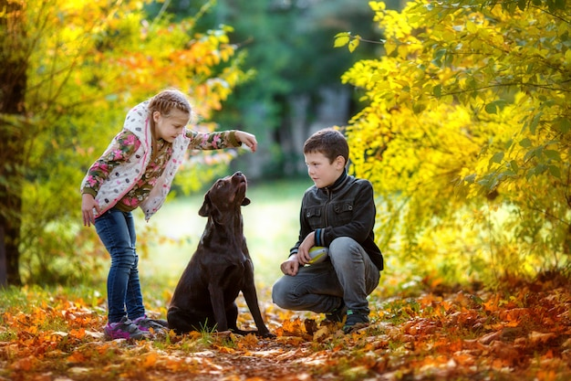 Autunno, i bambini giocano con il cane in autunno park