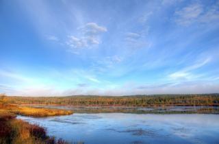 Autunno lago foresta
