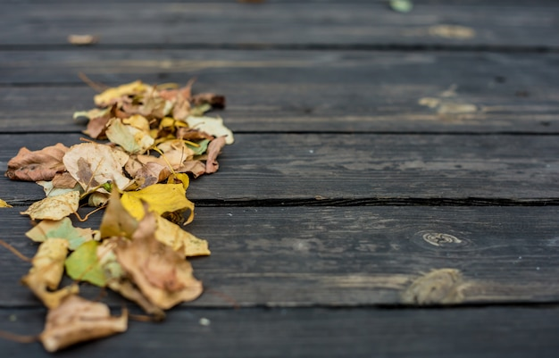 Autunno su un bellissimo tavolo di legno