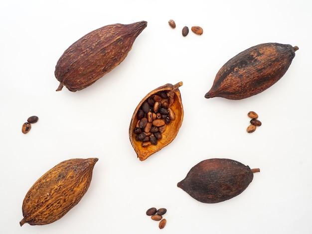 Baccello di cacao, fagioli e su sfondo bianco