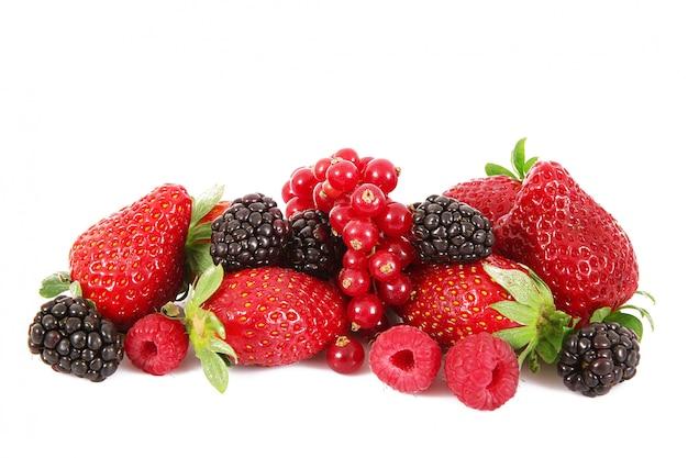 Bacche di frutta