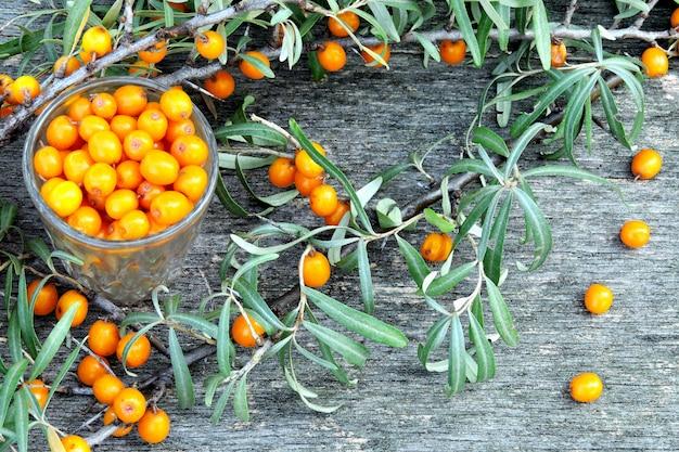 Bacche e foglie dell'olivello spinoso su un fondo di legno. la raccolta dell'olivello spinoso.