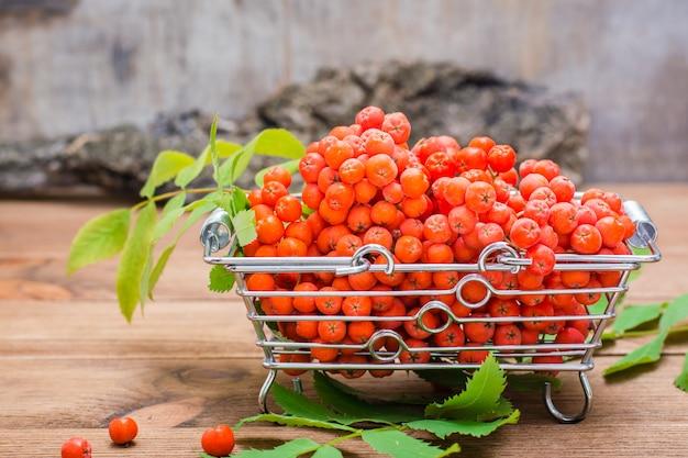 Bacche e foglie rosse della sorba in un canestro del metallo sulla tavola di legno