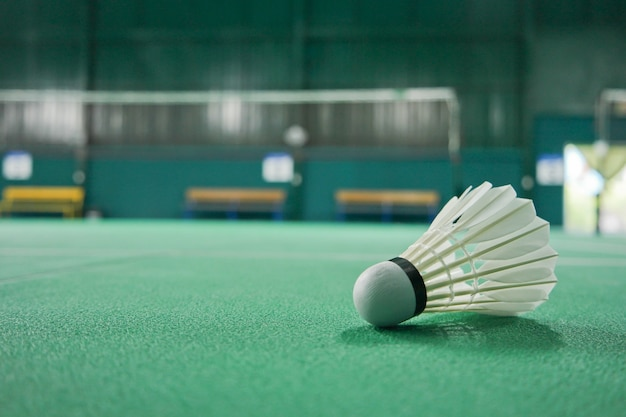 Ball badminton è nell'area di gioco.