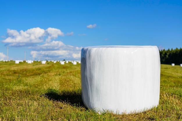 Balle di fieno rotonde con rivestimento in plastica
