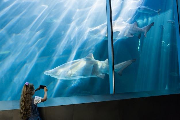 Bambina che esamina il serbatoio di pesce